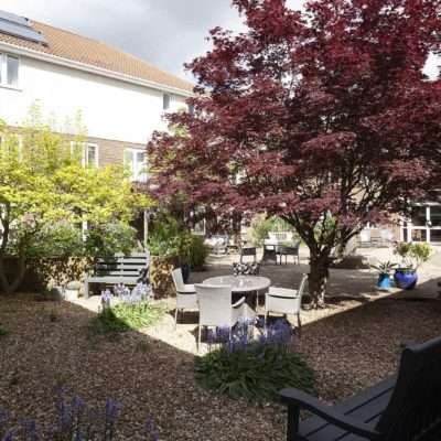 Red and green trees in garden area at Priory Court Care Epsom
